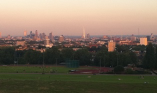 The view from Hampstead Heath, where pollution levels have been found to be just under the legal limit