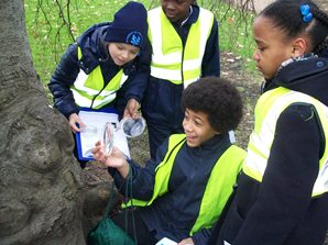Pupils inspecting lichen to measure air pollution as part of the Cleaner Air 4 Schools scheme - Defra has awarded funding to several London council's to roll out the scheme in local schools