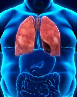 The study confirms that air pollution has a negative effect on lung function in adults